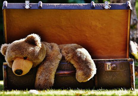Bourse aux jouets de saint sim on solidarit agenda for Piscine auxerre tarif